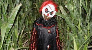 You'll Never Unsee The Horrors Of This Haunted Corn Maze In Arizona