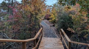The Spectacular Trail In Alabama That Leads To The Most Magnificent Autumn View