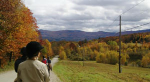 The Scenic Horseback Tour In Vermont That's Downright Magical In The Fall