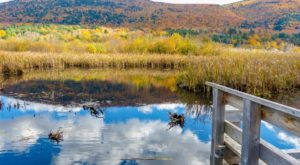 Here Are The 10 Best Vermont Towns For Viewing Fall Foliage