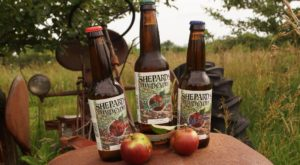 Here Are The 11 Best Places To Find Hard Cider In Wisconsin This Fall