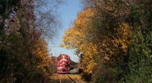 This 18-Mile Train Ride Is The Most Relaxing Way To Enjoy New Jersey Scenery