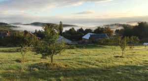 The Charming Massachusetts Cidery You'll Want To Visit This Fall