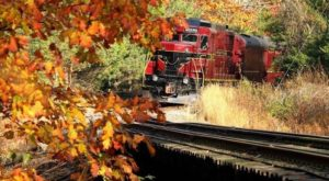 4 Ridiculously Charming Train Rides To Take Around Pittsburgh This Fall