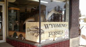 Wyoming's Dinosaur Store Is One Of The Most Unique In The World