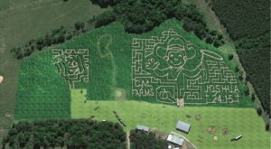 Get Lost In This Awesome 12-Acre Corn Maze In Louisiana This Autumn
