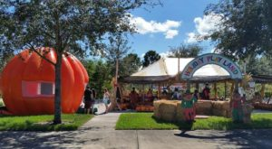 The Most Authentic Pumpkin Patch In Florida Has So Much More Than You'd Expect
