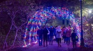 You've Never Seen Anything As Magical As This Holiday Lights Festival In Massachusetts