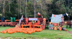 6 Farms In Louisiana That Transform Every Fall To Make Your Autumn Awesome