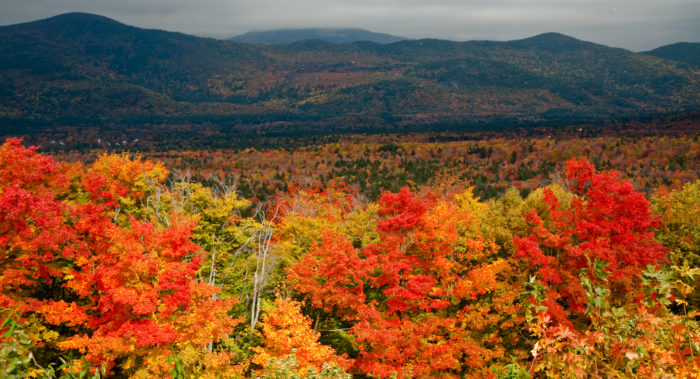 There's No Better Place To See America's Fall Foliage Than This One Dreamy Destination