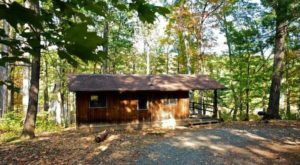 Sleep Underneath Gorgeous Fall Foliage When You Rent This Rustic Cabin In Virginia