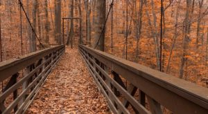 10 Of The Greatest Hiking Trails On Earth Are Right Here In Cleveland