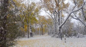 North Dakota Is Getting Hit With Record Breaking Snow And It's Only October