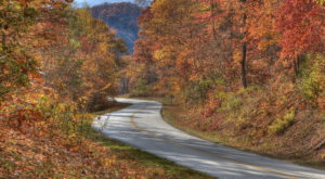 This 3-Hour Drive Through Virginia Is The Best Way To See This Year's Fall Colors