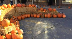 The Quirky Nebraska Town That Transforms Into A Pumpkin Wonderland Every Fall