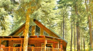 Book A Relaxing Getaway At These 7 Washington Cabins Before Autumn Ends