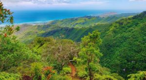The Little Known Ridge Trail That Will Show You A Side Of Hawaii You've Never Seen Before