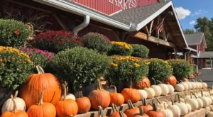 There's No Better Way To Celebrate Autumn Than With A Visit To This Big Red Barn In Indiana