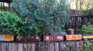 Few People Know About This Incredible Garden Railroad Right Here In Nebraska