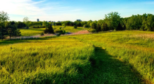 6 Gorgeous Parks That Prove Buffalo Is New York's Most Scenic City