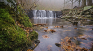 You'll Feel Like You're The Only Person In The World At This Tucked Away Arkansas Spring