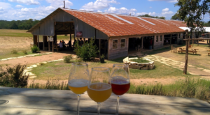Texas' Largest Farm Brewery Is Unexpectedly Awesome