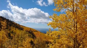This Incredible Hike Is The Best Way To See Endless Fall Colors In New Mexico