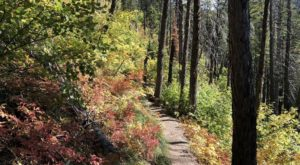 The Awesome Hike That Will Take You To The Most Spectacular Fall Foliage In Montana