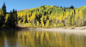 This Fall Hike In Utah Is A Doggone Good Time For All