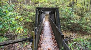 This Easy Fall Hike In Virginia Is Under 2 Miles And You'll Love Every Step You Take