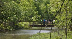 This 10 Mile Trail Takes You Through Oklahoma's Forests, Grasslands, And Wetlands
