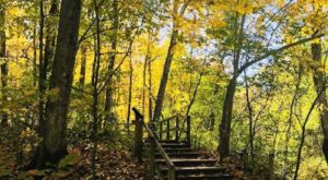 This Easy Fall Hike In Minnesota Is Under 2 Miles And You'll Love Every Step You Take