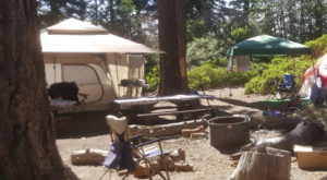 There's A Campground Nestled Inside This Southern California Forest And It Should Be At The Top Of Your Autumn Bucket List