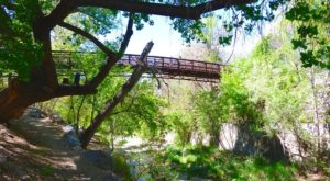 Take A Journey Through This One-Of-A-Kind Bridge Park In New Mexico