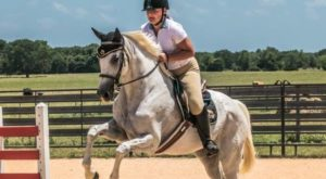 You Can Ride Retired Racehorses At This Little Known Texas Farm