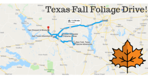 This 2-Hour Drive Through Texas Is The Best Way To See This Year's Fall Colors