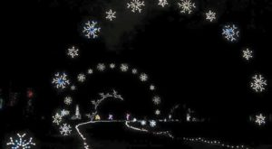 You Will Love This Dreamy Ride Through The Largest Drive-Thru Light Show In Virginia