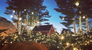 The One Maine Town That Transforms Into A Christmas Wonderland Each Year