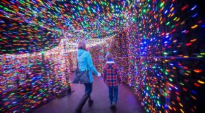 The Mesmerizing Christmas Display In Oregon With Over 1.5 Million Glittering Lights