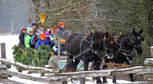 Travel Back In Time And Celebrate An Old World Wisconsin Christmas