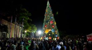 The One Light Display In Hawaii That Will Fill You With Holiday Wonder