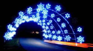 You Will Love This Dreamy Ride Through The Largest Drive-Thru Light Show In West Virginia
