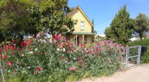 The Old-Fashioned Farm In Southern California That Captures The Best Of Small Town America