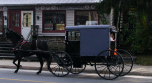 The Tiny Amish Town In Pennsylvania That's The Perfect Day Trip Destination