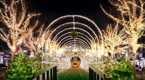 This Christmas Tree Trail Near Cleveland Is Like Walking In A Winter Wonderland