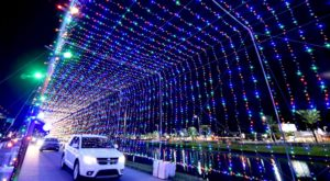 You Will Love This Dreamy Ride Through The Largest Drive-Thru Light Show In Florida