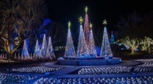 The One Garden In Kansas That Comes Alive With 2 Million Colorful Christmas Lights