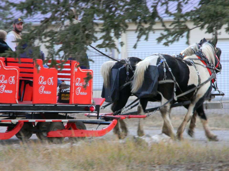 Grindstone Stables Horse Drawn Sleigh Rides In New Mexico