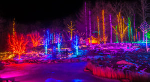 The Mesmerizing Christmas Display In Maine With Over 650,000 Glittering Lights