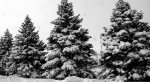 It's Impossible To Forget The Year Pittsburgh Saw Its Single Largest Snowfall Ever